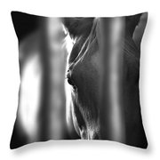 A Champ In Retirement Throw Pillow