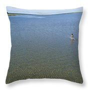 A Child Running Through The Water Throw Pillow