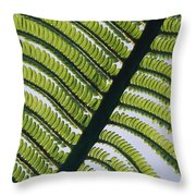 A Close View Of A Fern Throw Pillow