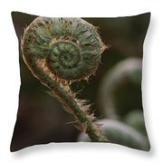 A Close View Of A Fiddlehead Fern Frond Throw Pillow