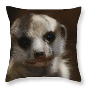 A Close View Of A Meerkat Suricata Throw Pillow