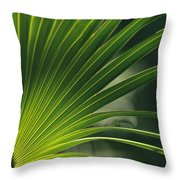 A Close View Of A Palm Frond Throw Pillow