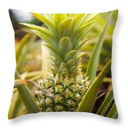 A Close View Of A Tainung Pineapple Throw Pillow