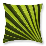 A Close View Of Sunlight Shining Throw Pillow