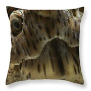 A Close View Of The Face Throw Pillow