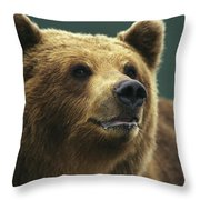 A Close View Of The Face Of A Brown Throw Pillow
