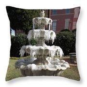 A Cold Morning Throw Pillow