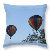 A Colorful Couple. Oshkosh 2012. Throw Pillow