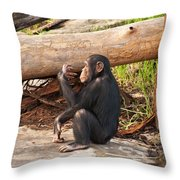 A Contemplative Youngster Throw Pillow