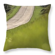 A Country Road In Virginia Throw Pillow