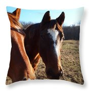A Cowboys Best Friend Throw Pillow by Robert Margetts