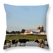 A Cow's Day At The Beach Throw Pillow