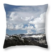 A Curved View Throw Pillow