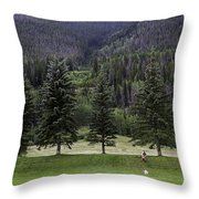 A Day At The Park In Vail Throw Pillow