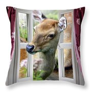 A Deer Enters The House Window. Throw Pillow