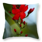 A Delicate Embrace Throw Pillow