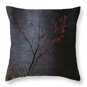 A Delicate Young Tree Blossoms Throw Pillow