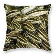 A Dense School Of Juvenile Striped Throw Pillow