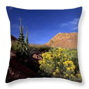 A Desert Landscape With Rock Formations Throw Pillow