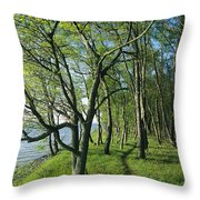 A Dirt Path Winds Through A Waterside Throw Pillow