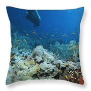 A Diver Explores Coral And Marine Life Throw Pillow