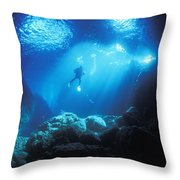 A Diver Hovers Inside The Archway As Throw Pillow