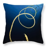 A Diver Swims Above A Whip Coral Throw Pillow