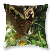 A Drop Of Nectar Throw Pillow