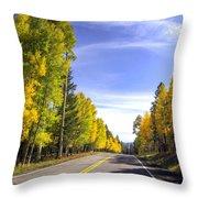 A Fall Drive  Throw Pillow