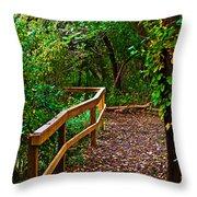 A Fall Walk Throw Pillow