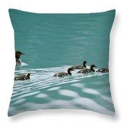 A Family Of Merganser Ducks Swim Throw Pillow