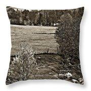 A Far Valley Sepia Throw Pillow