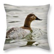A Female Canvasback Duck  Throw Pillow