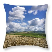 A Field Of Barley . Auvergne. France Throw Pillow