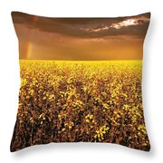 A Field Of Canola With A Rainbow Throw Pillow