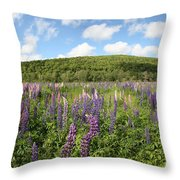 A Field Of Lupines Throw Pillow