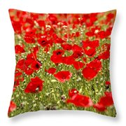 A Field Of Poppies Throw Pillow