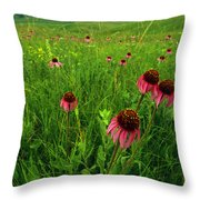 A Field Of Purple Coneflowers Throw Pillow