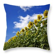 A Field Of Sunflowers . Auvergne. France Throw Pillow