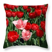 A Field Of Tulips Series 3 Throw Pillow