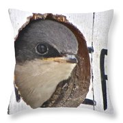 A First Look At The World Throw Pillow