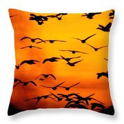 A Flock Of Geese Is Silhouetted Throw Pillow