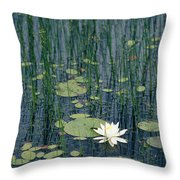 A Flowering Water Lily In Black Throw Pillow