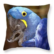 A Foot In Its Mouth Throw Pillow