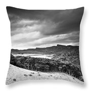 A Forest Area Along The Coast Under A Throw Pillow