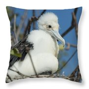 A Frigatebird Sitting In A Nest Throw Pillow