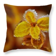 A Frosted Plant Throw Pillow