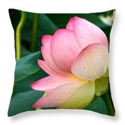 A Gentle Unravelling Throw Pillow