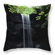 A Gentle Woodland Waterfall With Maple Throw Pillow
