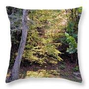 A Golden Hill Of Sunlight Throw Pillow